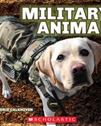 MilitaryAnimals