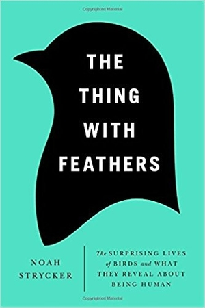 The Thing With Feathers: The Surprising Lives of Birds and What They Reveal About Being Human by Noah Strycker