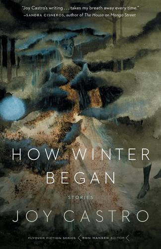 How Winter Began: Stories by Joy Castro