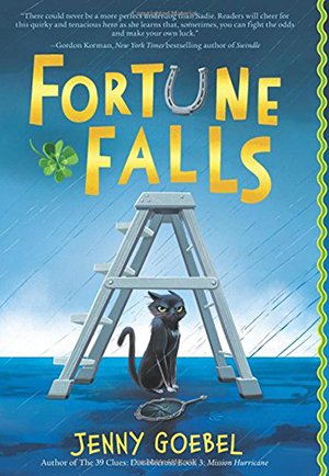 Fortune Falls by Jenny Goebel