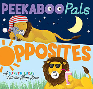 Peekaboo Pals Opposites by Becky Davies, illustrated by Gareth Lucas