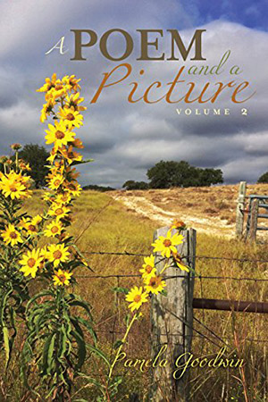 A Poem and a Picture Volume 2 By Pamela Goodwin