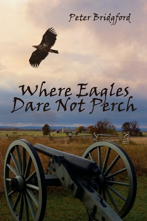Where Eagles Dare Not Perch by Peter Bridgford