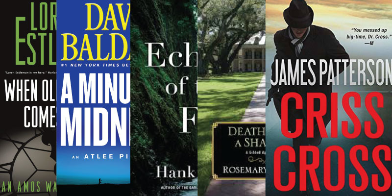 Page-Turner Mystery Books